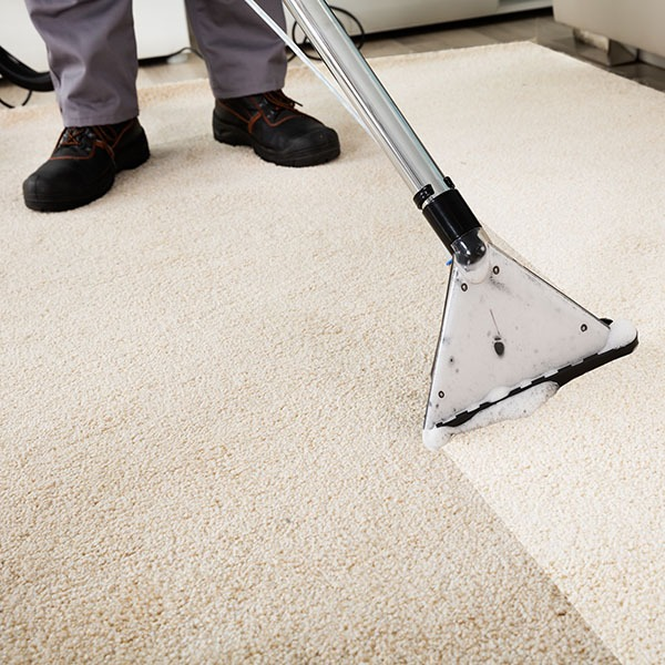 steam clean san diego carpet cleaning