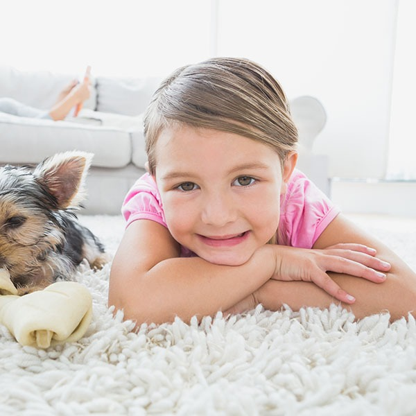 little kid laying on carpet steam cleaning pets steamco