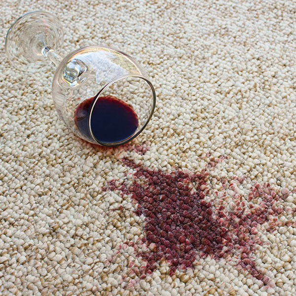 how to clean wine stains on carpet steam co san diego