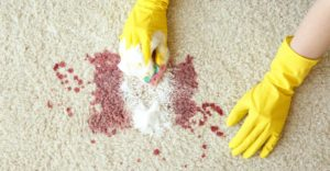 how to remove blood stains from carpet SteamCo